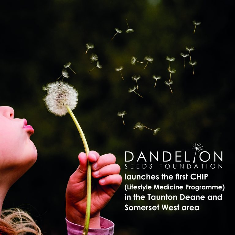 Dandelion Seeds Foundation launches the first CHIP
